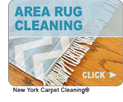 area-rug-cleaning-button-small3