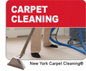 carpet-cleaning-2-button-small