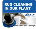 rug-cleaning-plant-button-small4